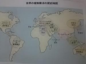 世界の植物療法の世界地図